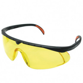 BARDEN Safety glasses