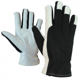 EDU Leather and textile gloves