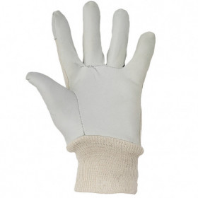 HOBBY Leather and textile gloves 2